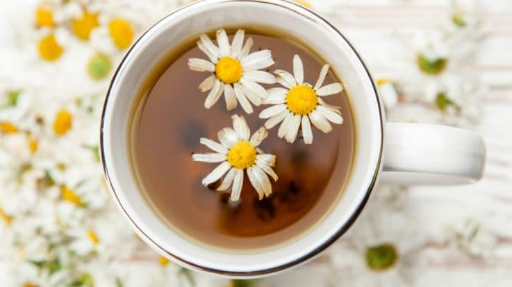 The Power of Chamomile and Its Many Healing & Medicinal Properties