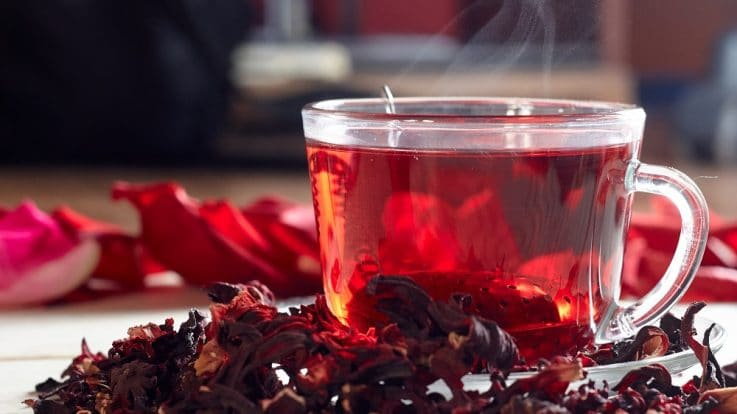 The Bright Hibiscus Flowers & Its Medicinal Properties